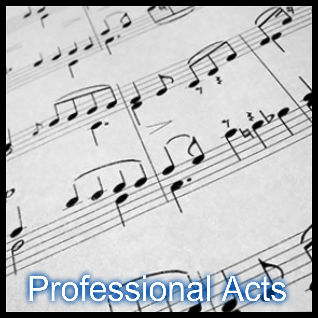 Stone Entertainment LTD - Professional Acts